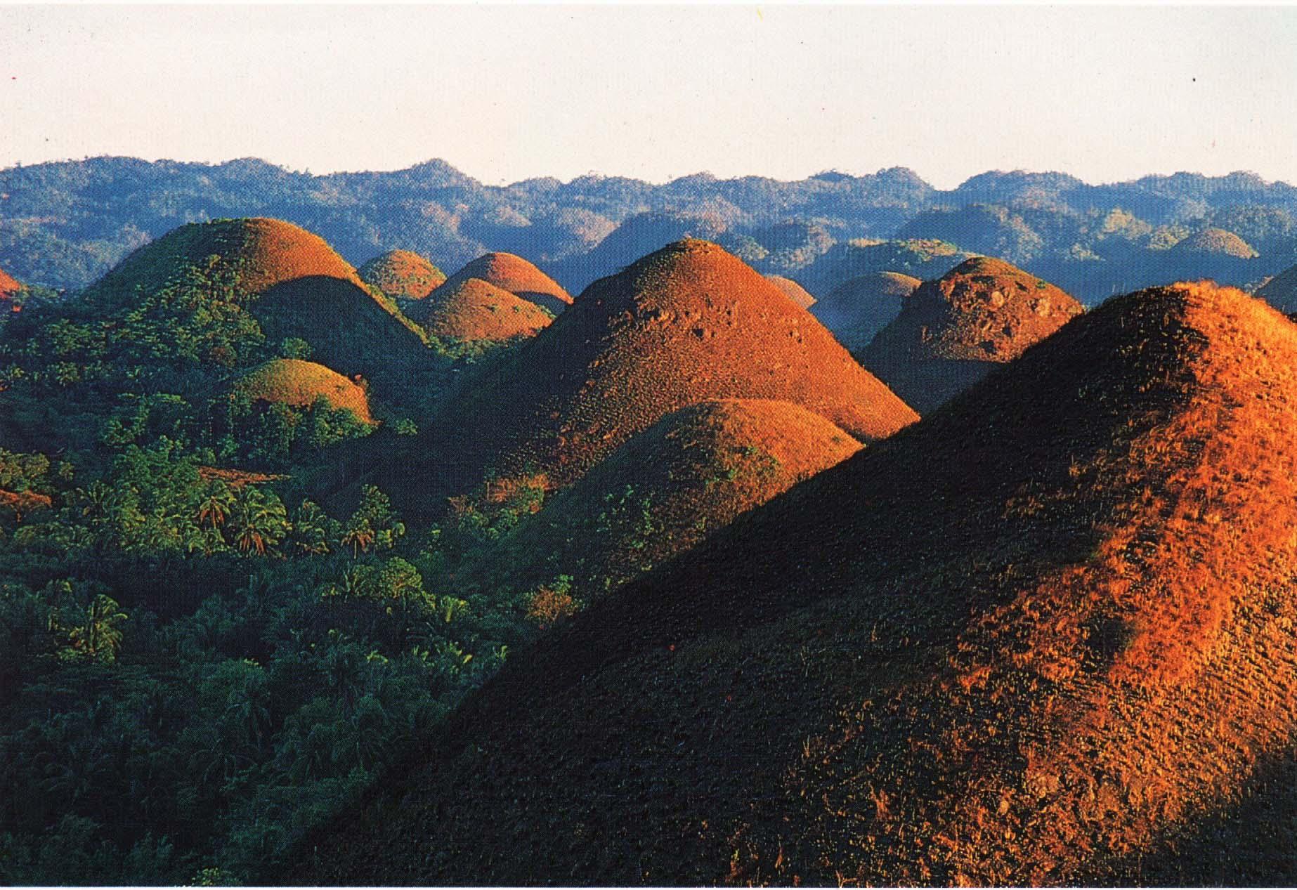 Bohol Worldwidelink Travel Tours Incorporated
